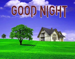 Good Night Images Pics Wallpaper for friend