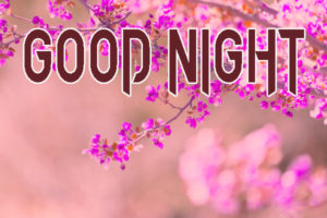 Good Night Images Pictures Download In HD