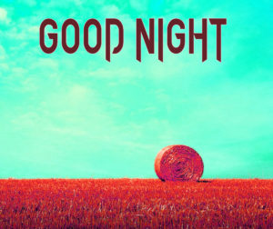 Good Night Images Pictures Photo Wallpaper