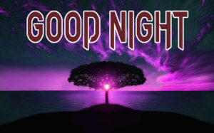Good Night Images Pics pictures Download