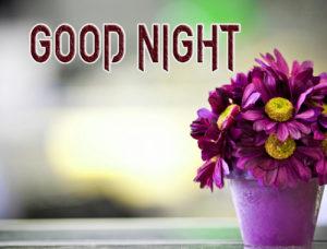 Good Night Images Pics Wallpaper Download