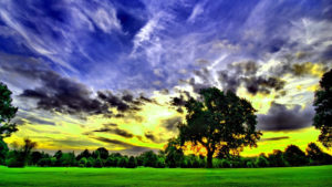 Beautiful nature images photo wallpaper for facebook