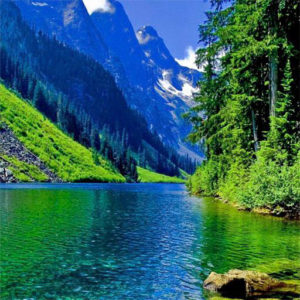 Beautiful nature images pictures pics free hd