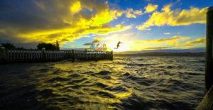 Beautiful nature images wallpaper photo free download