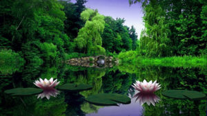 Beautiful nature images pictures pics hd