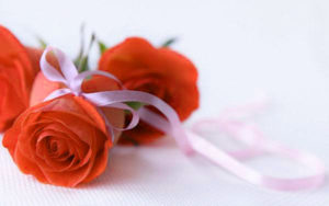 Cute Baby Boys & Girls Nice dp for whatsapp Profile Images Photo With Red Rose