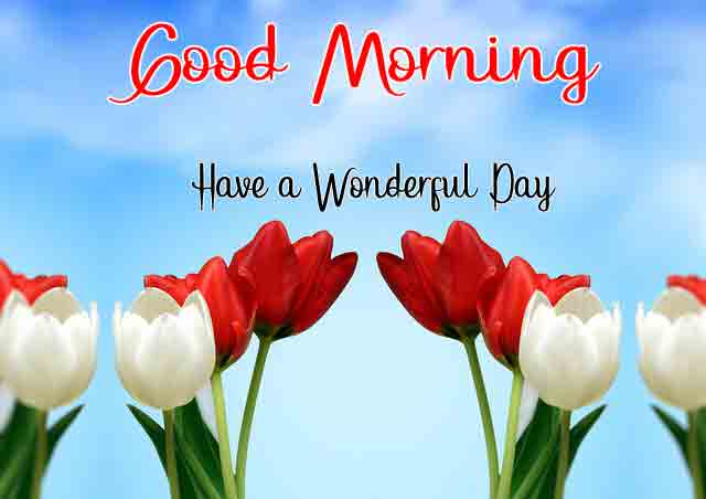 best Good Morning Wishes for Lover pics hd
