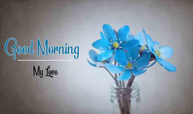 blue flower Good Morning Wishes for girlfriend pics