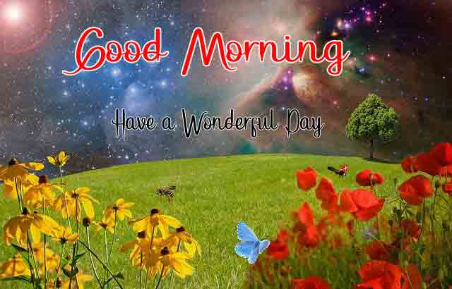cute red flower Good Morning pics free download