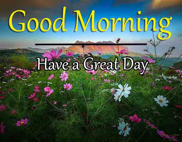 latest nature Good Morning hd download