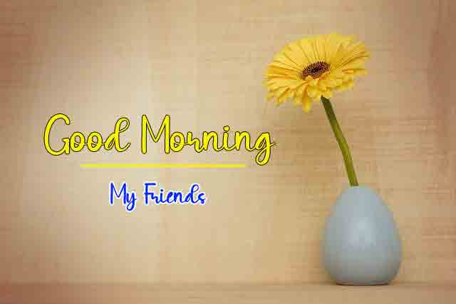 nice alone yellow flower Good Morning Wishes for girlfriend pics hd