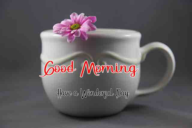 p Good Morning cup and flower pics hd