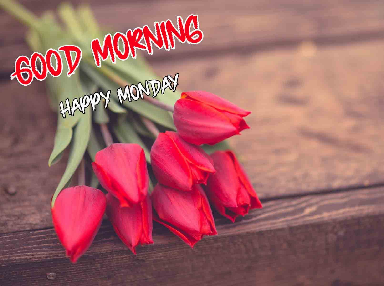 Beautiful Latest Monday Good Morning Images pics free hd