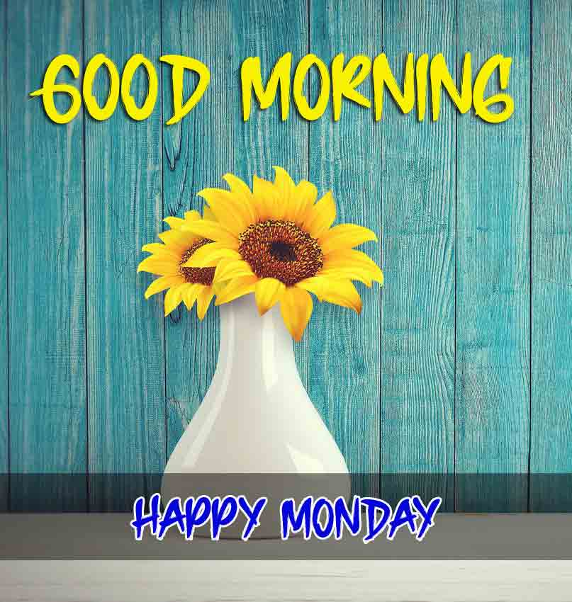 Beautiful Latest Monday Good Morning Images pictures for friends