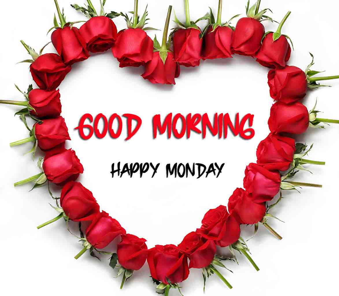 Beautiful Latest Monday Good Morning Images wallpaper free hd download