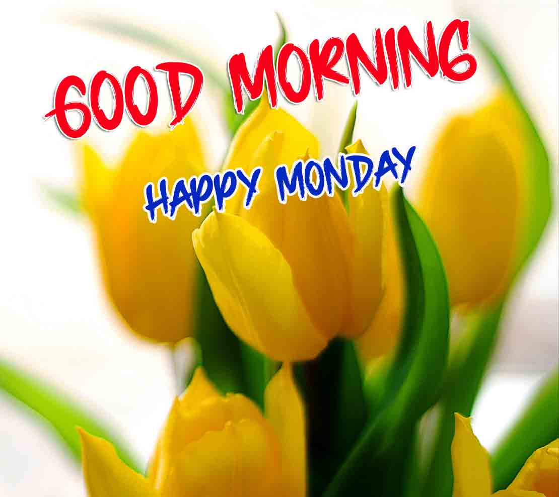 Beautiful Latest Monday Good Morning Images wallpaper photo hd download