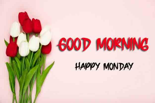 Beautiful Monday Good Morning Images pics download