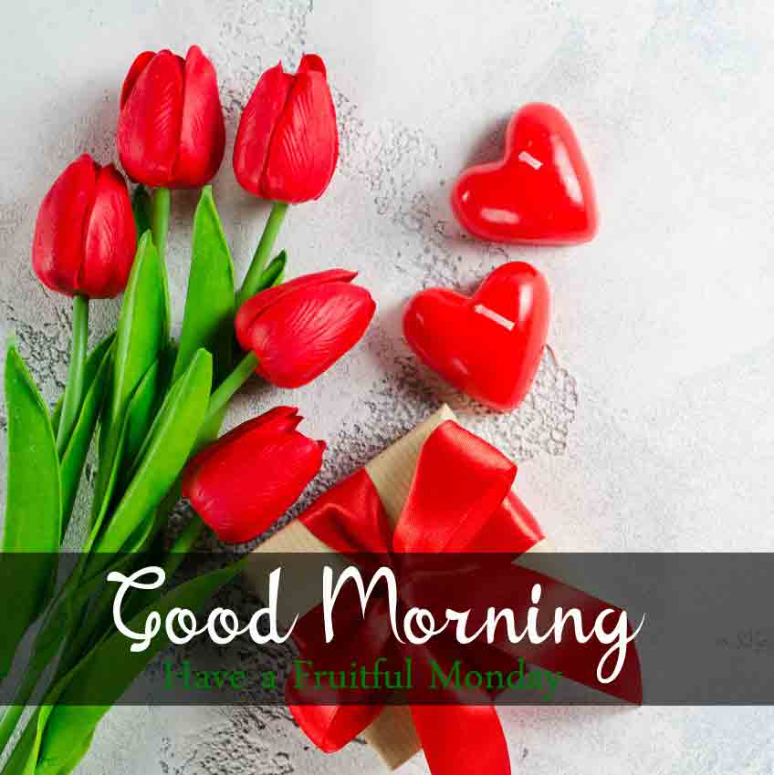Beautiful Monday Good Morning Images pics for my love