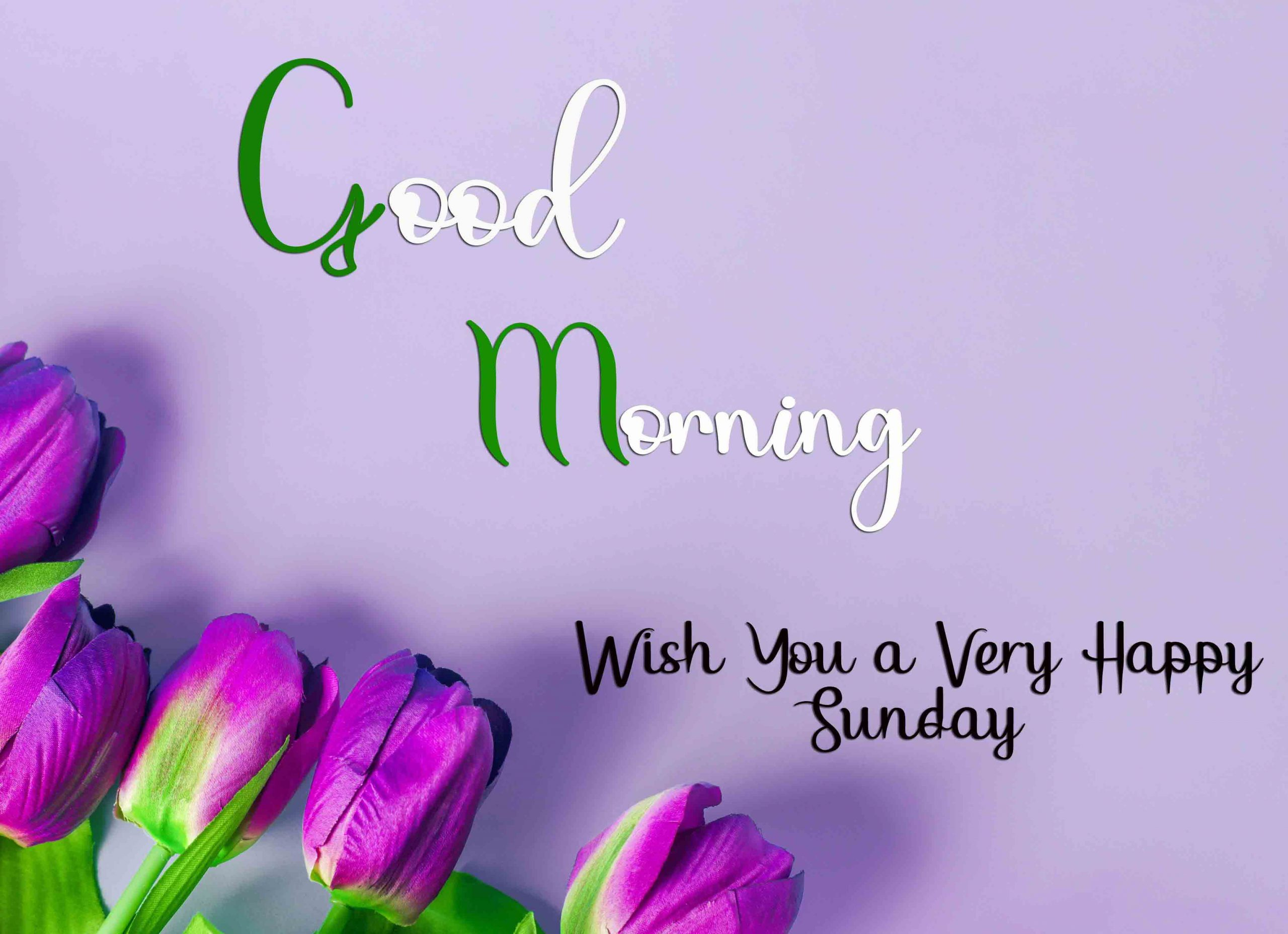Best Good Moring Happy Sunday photo for love