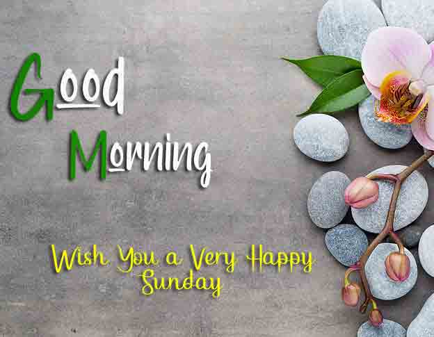 Best Good Moring Happy Sunday pics for facebook