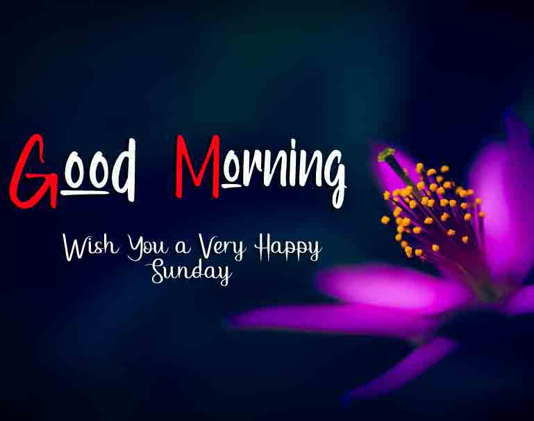 Best Good Moring Happy Sunday pics for friends