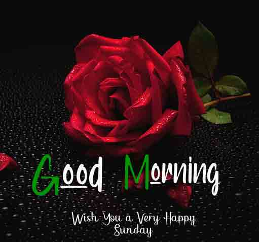 Best Good Moring Happy Sunday pictures for best wishes