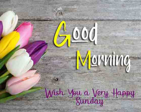 Best Good Moring Happy Sunday pictures photo hd download