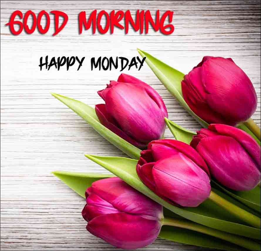 Best Monday Good Morning Images free download