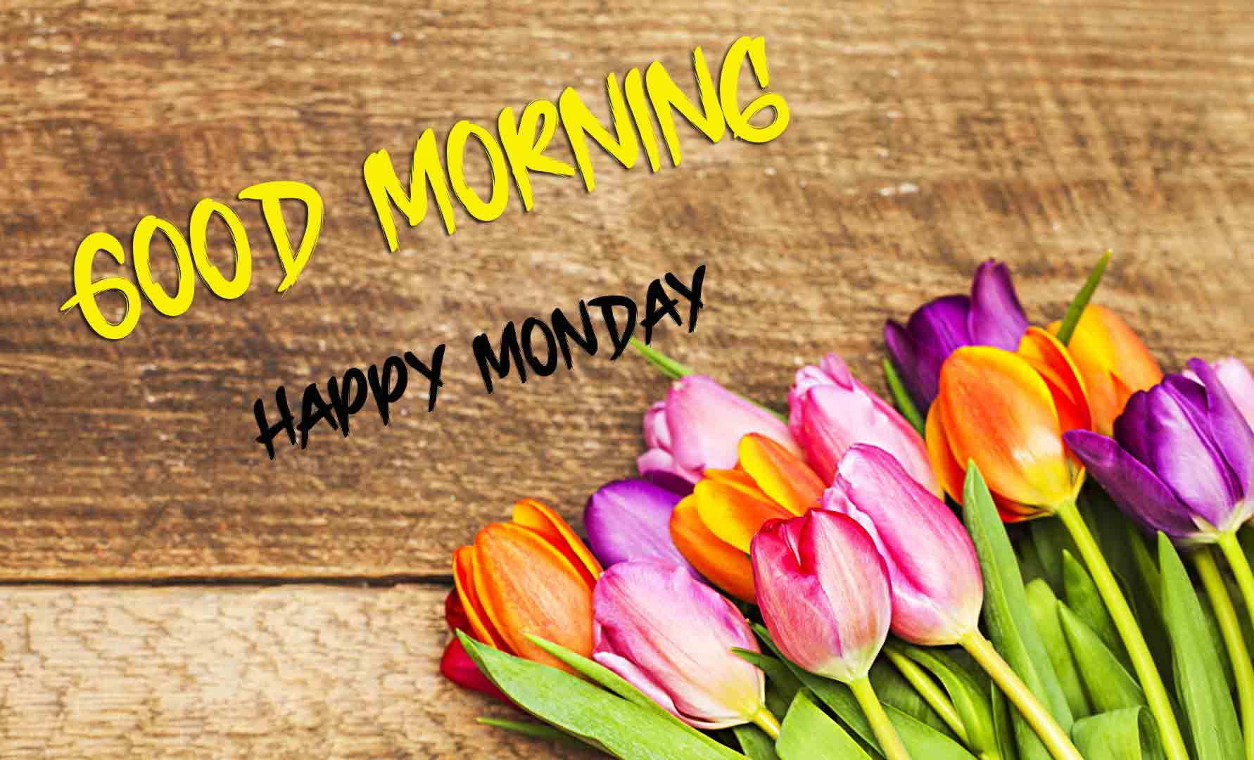 Best Monday Good Morning Images photo for friends