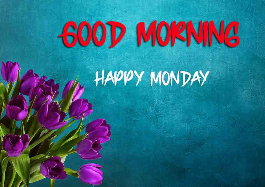 Best Monday Good Morning Images photo pics download