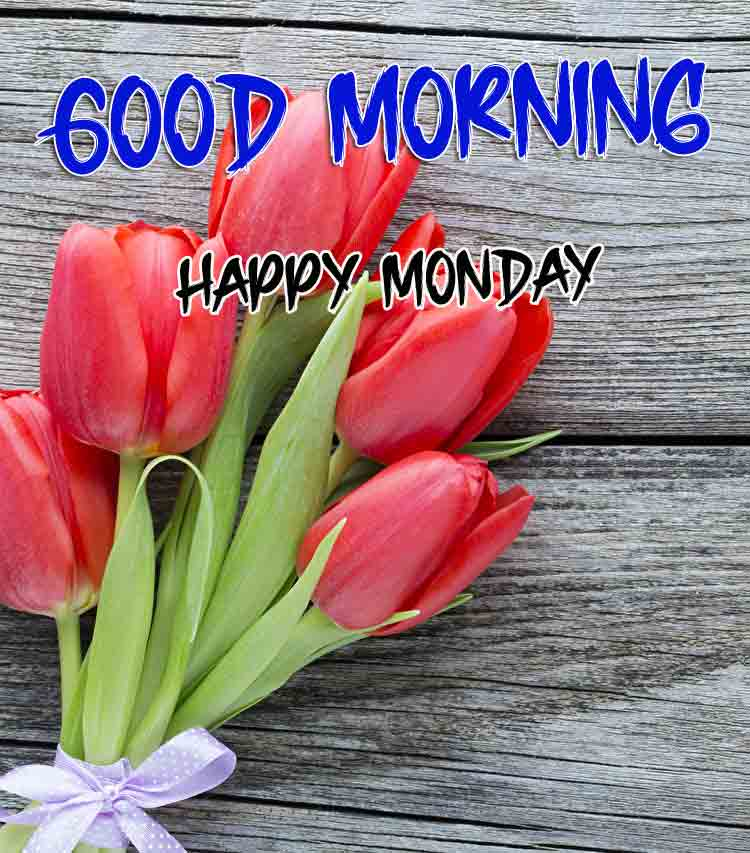 Best Monday Good Morning Images pics for friends