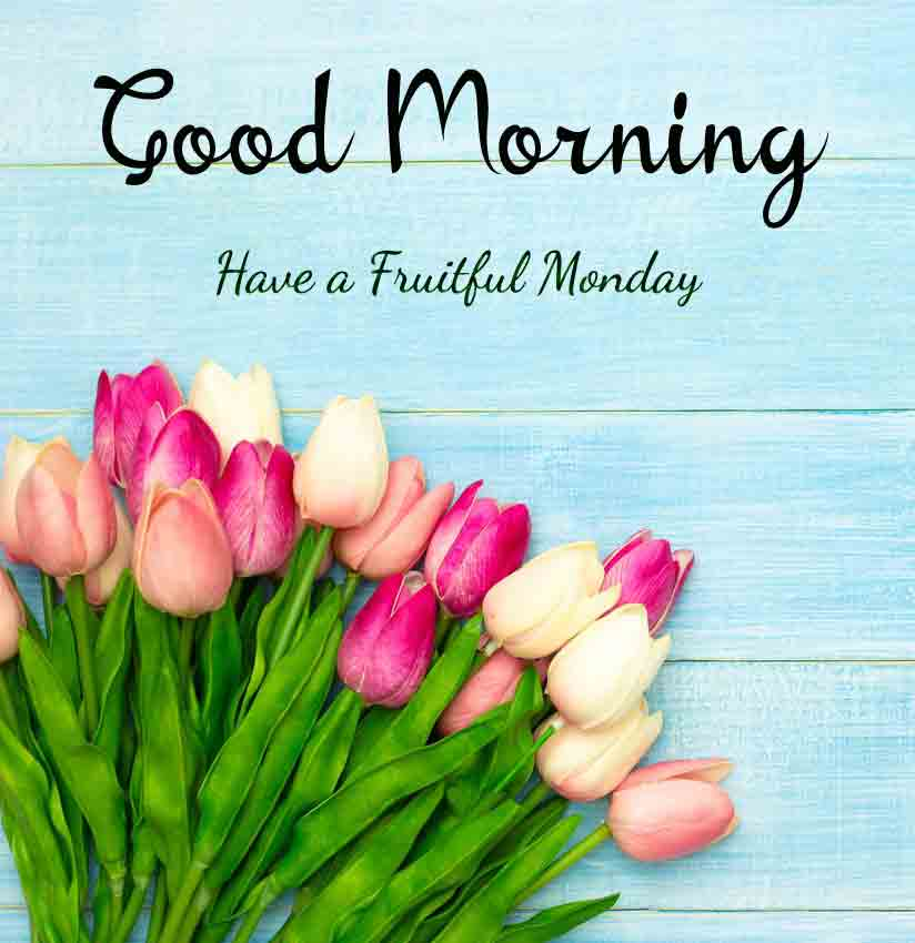 Best Monday Good Morning Images pics for love
