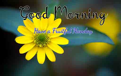 Best Monday Good Morning Images pictures photo hd
