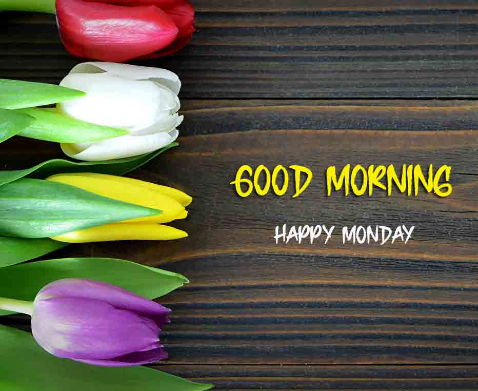 Best Monday Good Morning Images pictures pics