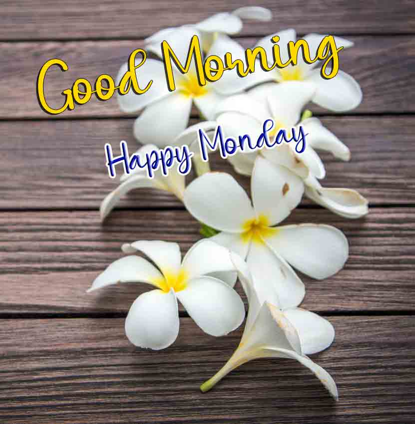 Best Monday Good Morning Images
