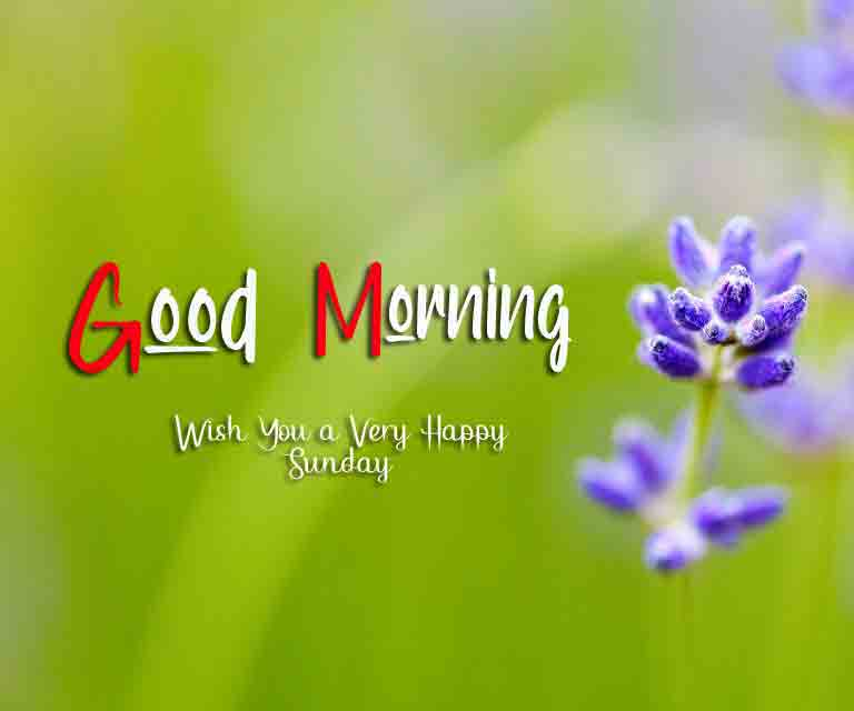 Good Moring Happy Sunday photo for best friends