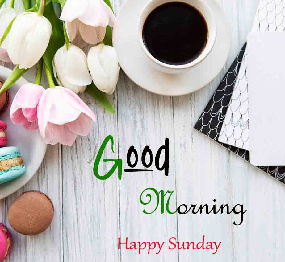 Good Moring Happy Sunday pics for friends