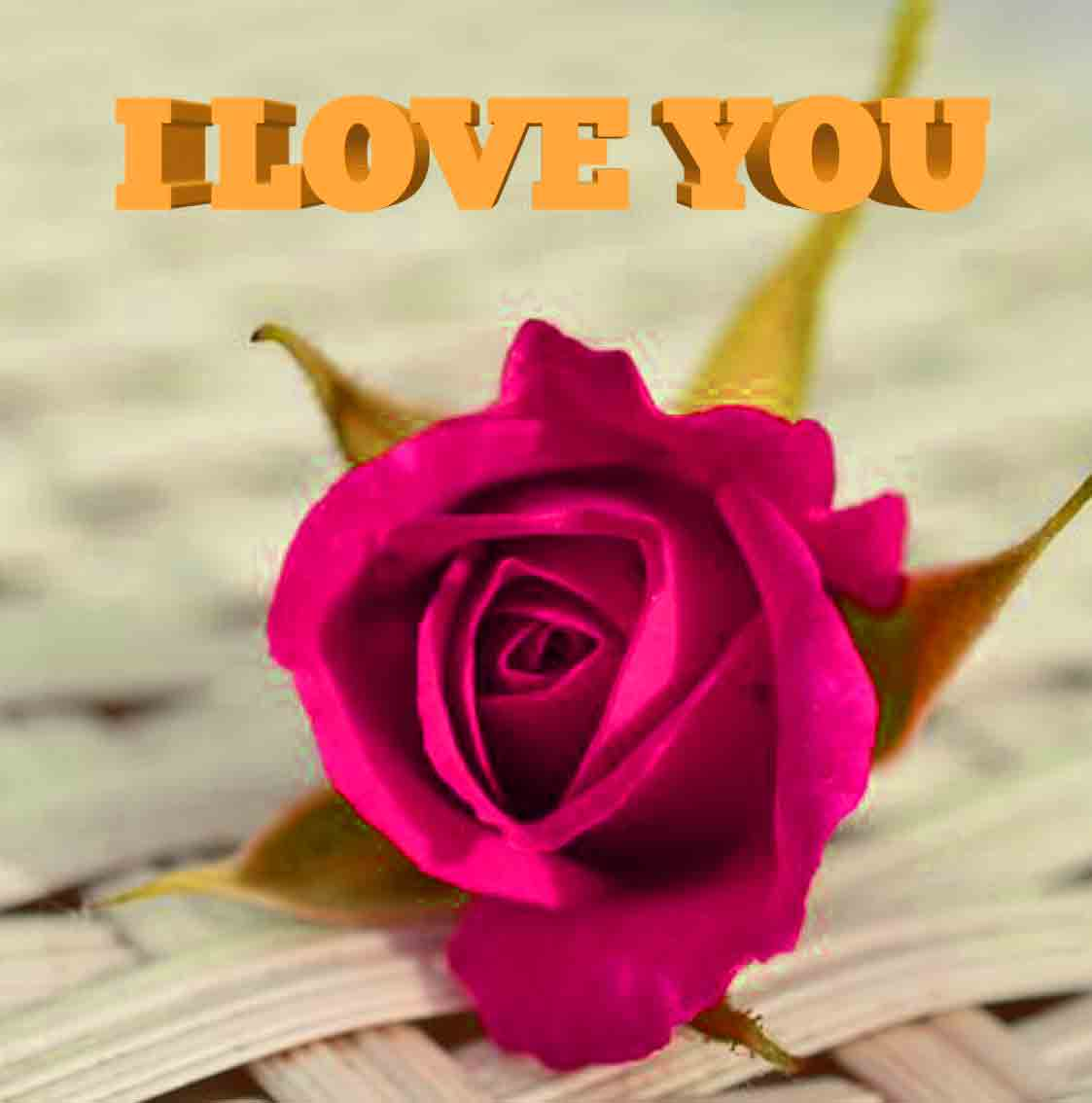 I Love You Whatsapp Dp Images wallpaper pictures pics