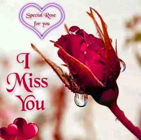 I Miss You Images with red rose