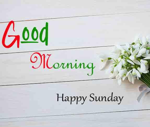 Latest Good Moring Happy Sunday photo download