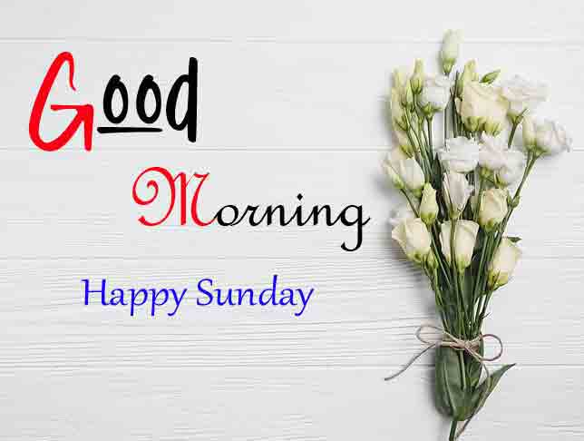 Latest Good Moring Happy Sunday pictures download