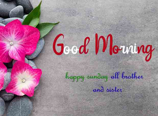 Latest Good Moring Happy Sunday pictures free hd