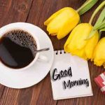 Happy Sunday Good Morning [ 1123+ Download ] Images HD