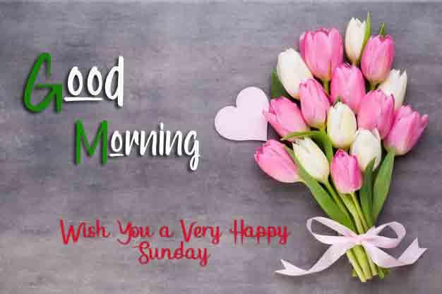 New Good Moring Happy Sunday pics free download