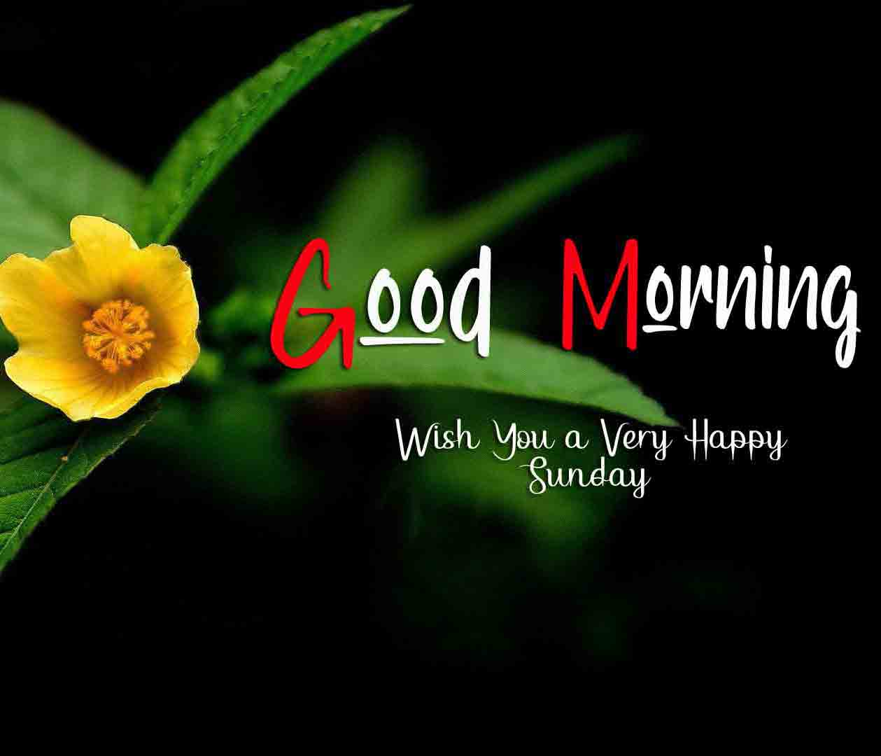 New Good Moring Happy Sunday pictures hd