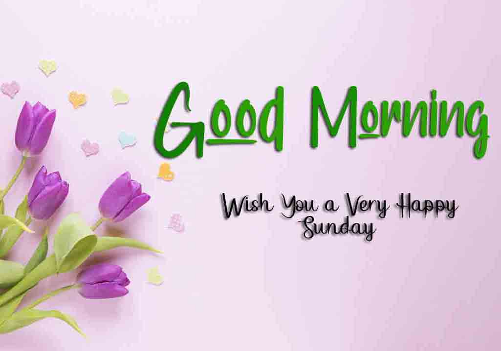 Nice Good Moring Happy Sunday photo for download