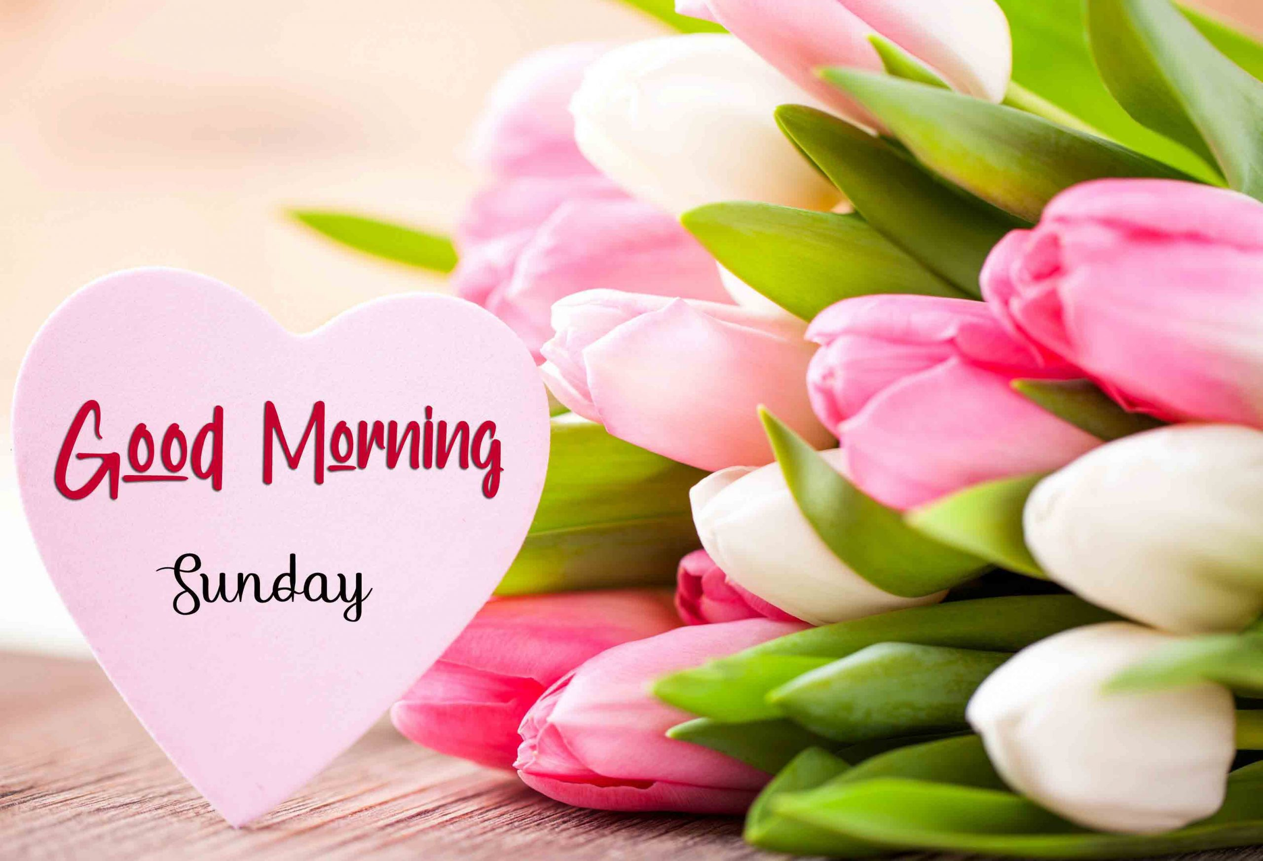 Nice Good Moring Happy Sunday pics photo for hd download