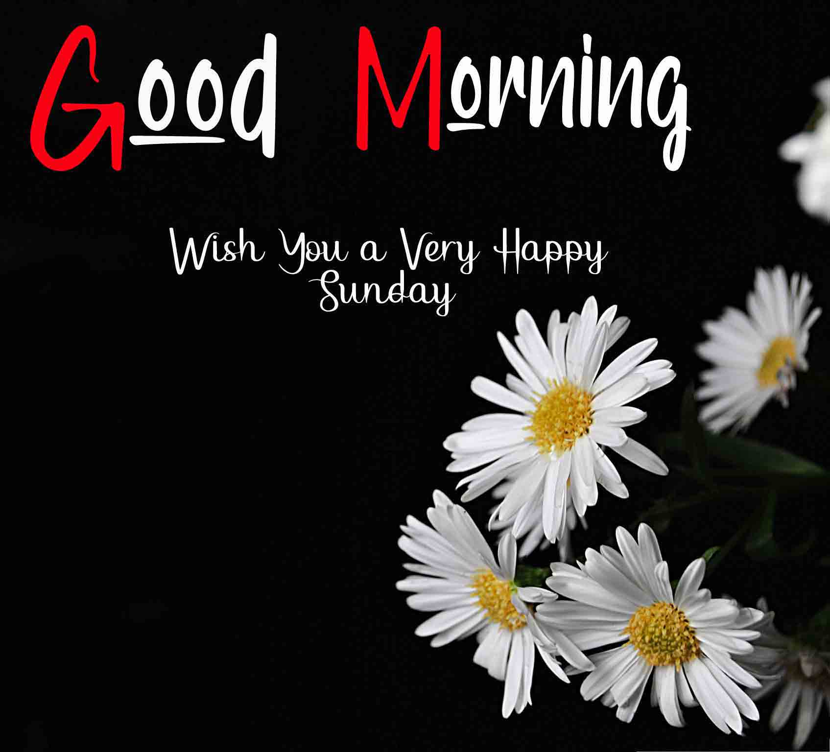 Nice Good Moring Happy Sunday pics wallpaper free download