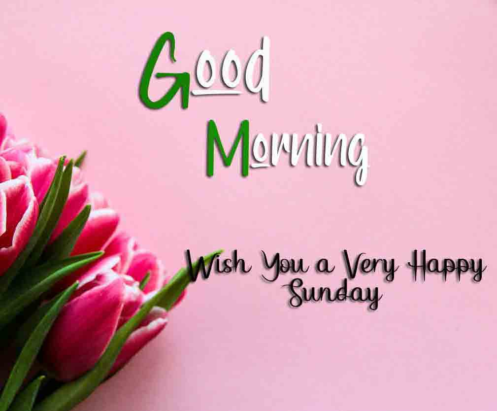 Nice Good Moring Happy Sunday pictures free hd