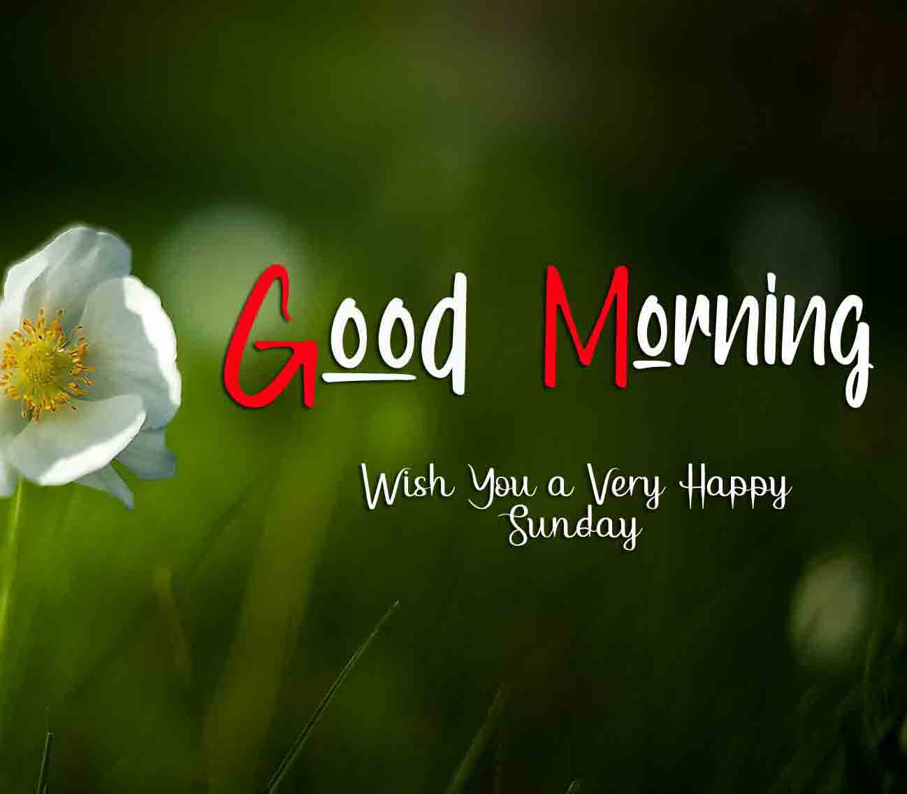 Nice Good Moring Happy Sunday pictures photo free download
